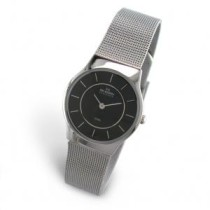 Skagen Ladie's Watch 233SSSB